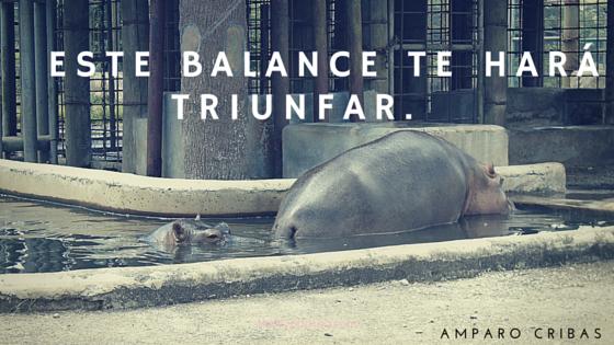 descubre el balance ideal